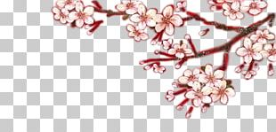 Cherry Blossom Petal Fashion Accessory Jewellery PNG
