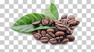 Jamaican Blue Mountain Coffee Cafe Chocolate-covered Coffee Bean Single-origin Coffee PNG