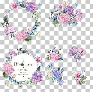 Flower Garden Hydrangea Blossom PNG