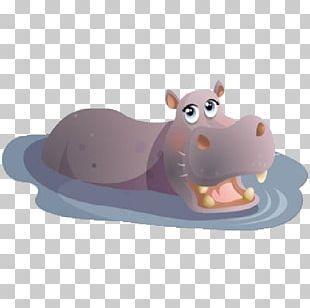 Hippopotamus Rhino Vs. Hippo Cuteness PNG