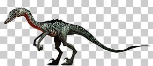 Jurassic Park: The Game Troodon Jurassic World Evolution Velociraptor PNG