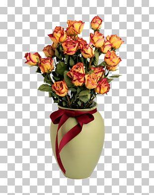 Solanum Pseudocapsicum Plant Rose Flower PNG
