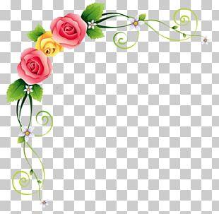 Garden Roses Flower Floral Design PNG