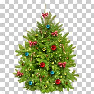 Santa Claus Christmas Lights Christmas Tree Poetry PNG