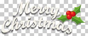 Merry Christmas Mistletoe PNG