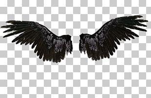 Castiel Drawing Wings Angel PNG