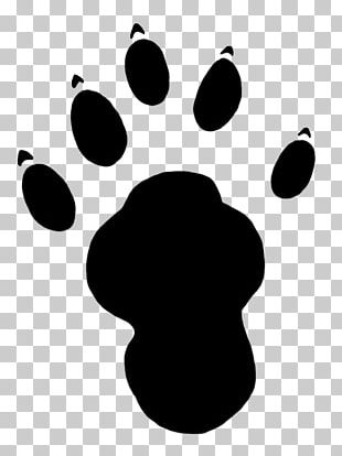 Sea Otter Paw Footprint PNG