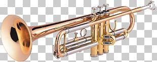 Trumpet Wind Instrument Musical Instruments Trombone PNG