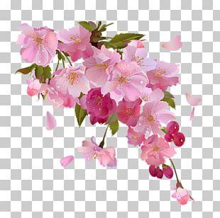 Wedding Invitation Pink Flowers PNG