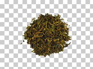 Romeritos Nori Golden Monkey Tea Green Bell Pepper Nilgiri Tea PNG