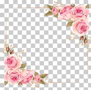 Wedding Invitation Flower Rose Pink PNG