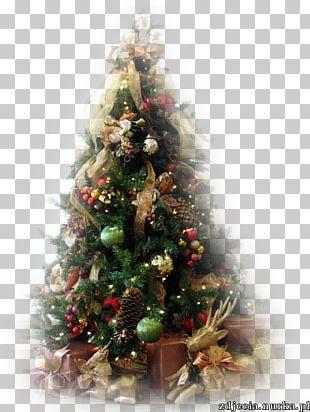 Christmas Tree Fir Christmas Ornament Santa Claus PNG