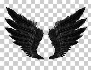 Black Angel Wings PNG