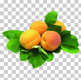 Juice Armenian Food Apricot Fruit Plum PNG