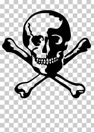 Human Skull Symbolism Bone Human Skeleton PNG