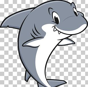 Shark Stock Photography PNG