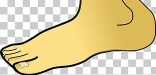 String Instrument Accessory Thumb Shoe Product Design PNG