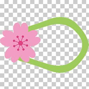 National Cherry Blossom Festival Cerasus PNG