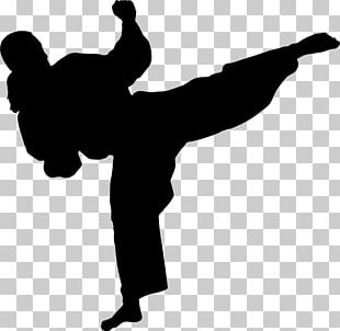 Karate Martial Arts Kick Wall Decal Stencil PNG