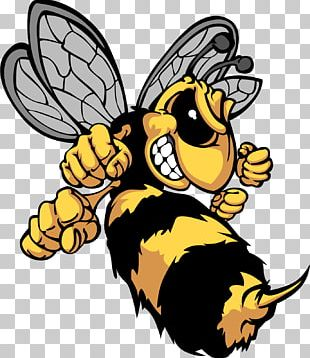 Bee Hornet Insect Yellowjacket PNG