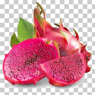 Juice Hylocereus Undatus Pitaya Herb Dried Fruit PNG