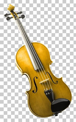 Bass Violin Violone Viola Double Bass PNG
