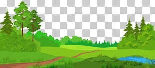 Meadow PNG