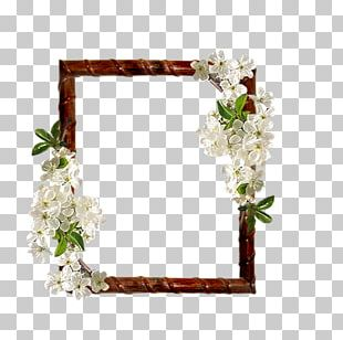 Floral Design Frames Cut Flowers Flower Bouquet PNG