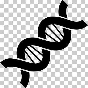 Genetics Computer Icons DNA PNG