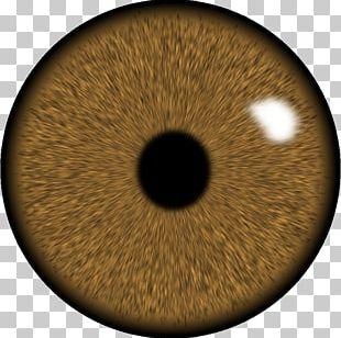 Eye Lens GIMP Iris PNG