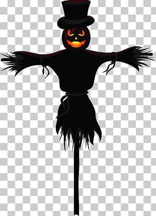 Halloween Jack-o-lantern Pumpkin Holiday PNG