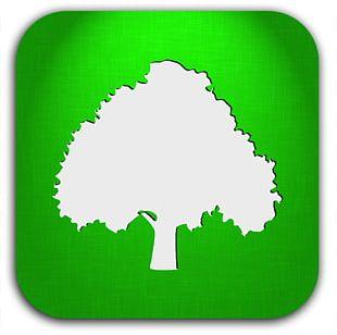 Computer Icons Tree Arborist PNG