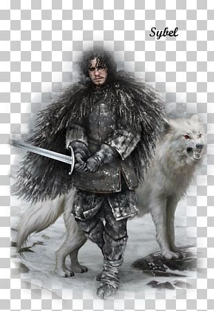 Jon Snow Daenerys Targaryen Arya Stark Winter Is Coming A Song Of Ice And Fire PNG