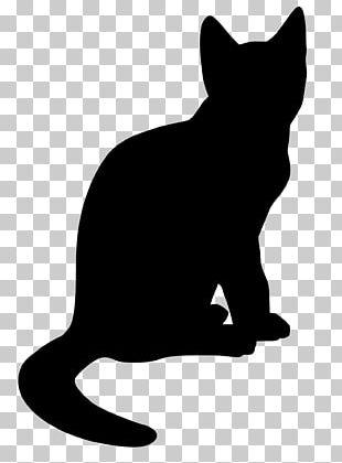 Cat Drawing Kitten PNG
