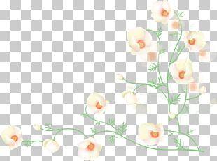 Flower Poppy Desktop PNG