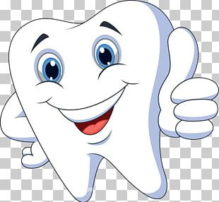 Human Tooth Cartoon PNG