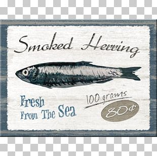 Sardine Fish Herring Smoking Craft Magnets PNG