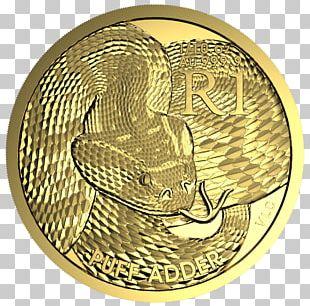Reptile Snake Bitis Arietans Coin Crocodile PNG