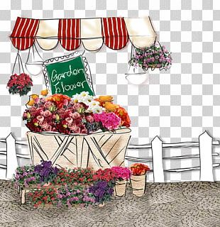 Flower Floristry Wall Photography PNG