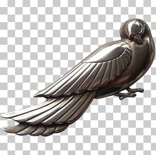 Feather Beak PNG