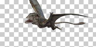 Jurassic World Evolution Ankylosaurus Dinosaur Jurassic Park Velociraptor PNG