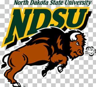 North Dakota State University North Dakota State Bison Football North Dakota State Bison Men's Basketball NCAA Division I Football Championship James Madison Dukes Football PNG