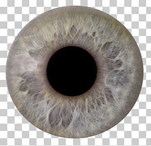 Human Eye Iris Pupil Eye Color PNG