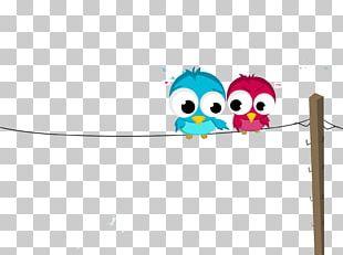 Flightless Bird Cartoon Animation Illustration PNG