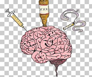 Human Brain Drug Human Body Adverse Effect PNG