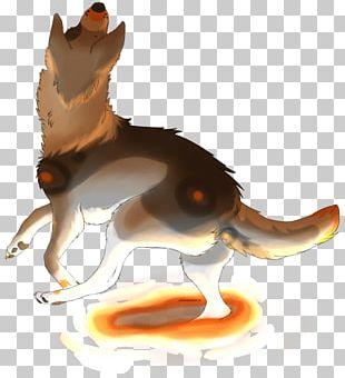 Cat Dog Macropodidae Canidae Paw PNG
