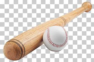 Baseball Bats USA Baseball Little League Baseball Composite Baseball Bat PNG