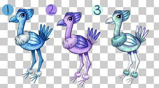 Flightless Bird Beak Feather PNG