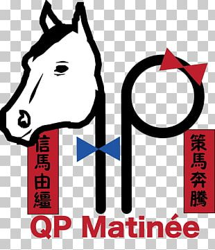 Horse Tack Graphic Design Mammal PNG