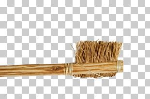 Electric Toothbrush Tooth Brushing Teeth Cleaning Twig Bristle PNG